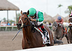 Hal's Hope Could Springboard Csaba to Donn