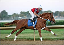 Curlin Completes Final Belmont Stakes Preparations