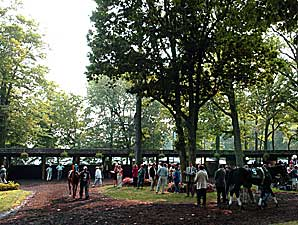 Officials Hopeful for Delaware Park Meet