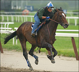 Steve Haskin's Belmont Report: Empire Maker Turns in Powerhouse Gallop