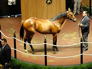 High Buy-Backs and $330k Colt Open FTK