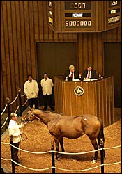 Smarty Jones' Dam Brings $5 Million