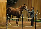 Mr. Greeley Colt Sells for $875,000