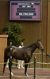 Numbers Soar as Storm Cat, Maktoums Dominate Keeneland Sale
