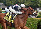 Main Sequence Works at Palm Meadows