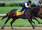 Astrology, 'Interlude' Set for Preakness