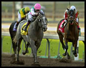 Santa Anita Race Report: The Master