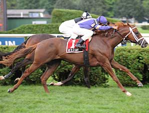 Red Giant Out of Breeders' Cup, Retired