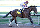 Royal Delta Back for More in Personal Ensign