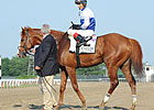 Shackleford Pedigree Influenced by Dr. Fager