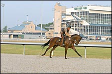'Polytrack Lab' Turfway Has More Data, Answers
