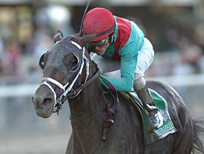 Unbridled Belle to Be Bred to A.P. Indy
